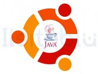 Installare Java su Ubuntu 11.04 Natty Narwhal