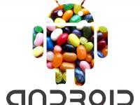 Android 5.0 Jelly Bean in arrivo entro fine anno?